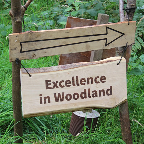 Excellence in Woodland event sign